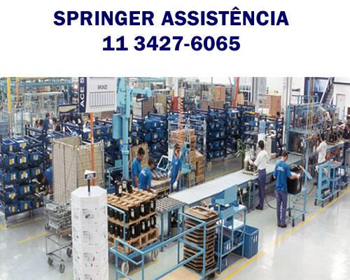 Springer Assistência SP