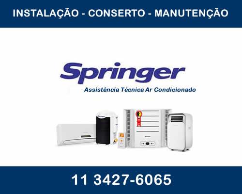 Assistência Técnica Springer